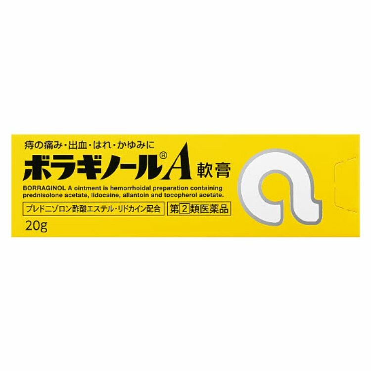 【指定第2類医薬品】ボラギノールA軟膏 20G
