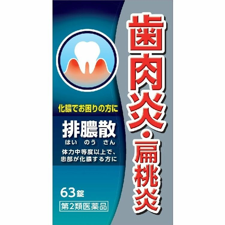 【第2類医薬品】排膿散エキス錠J  63錠