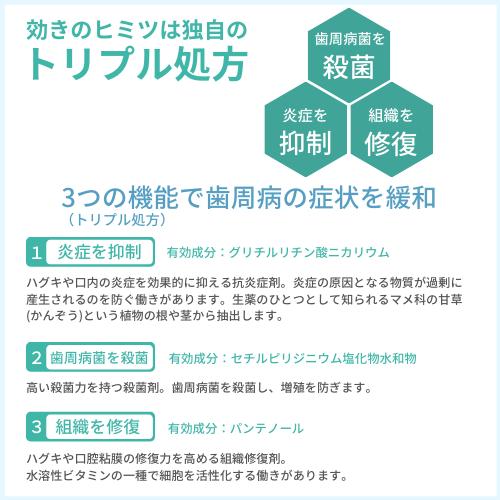 【第3類医薬品】ガム(G・U・m) メディカルペーストEX 25g