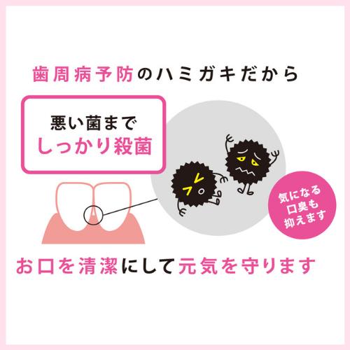 システマ デンタルペースト アルファ(Systema Dentalpaste α)