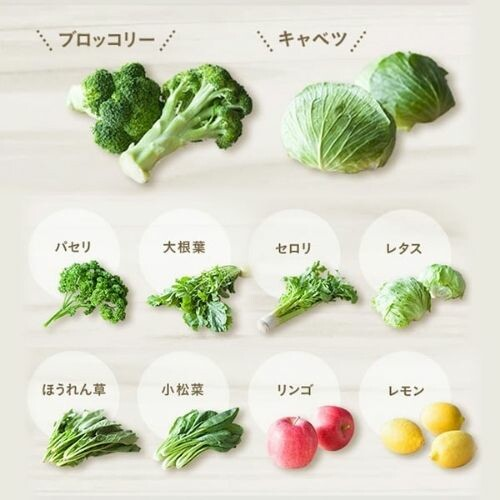 緑でサラナ 160g×30本
