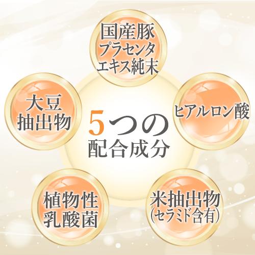 5つの成分を配合